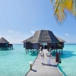 马尔代夫美人礁岛度假酒店简介